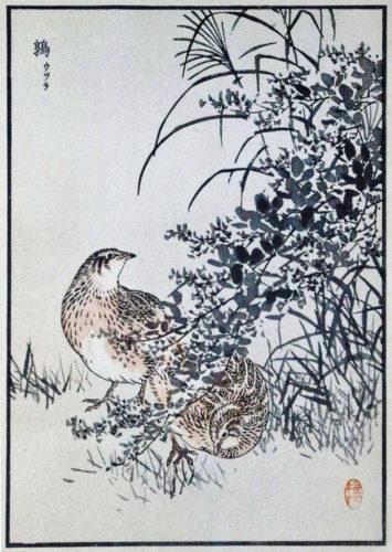 Japanska vaktlar: Träsnitt av Kono Bairei, 1800-tal.